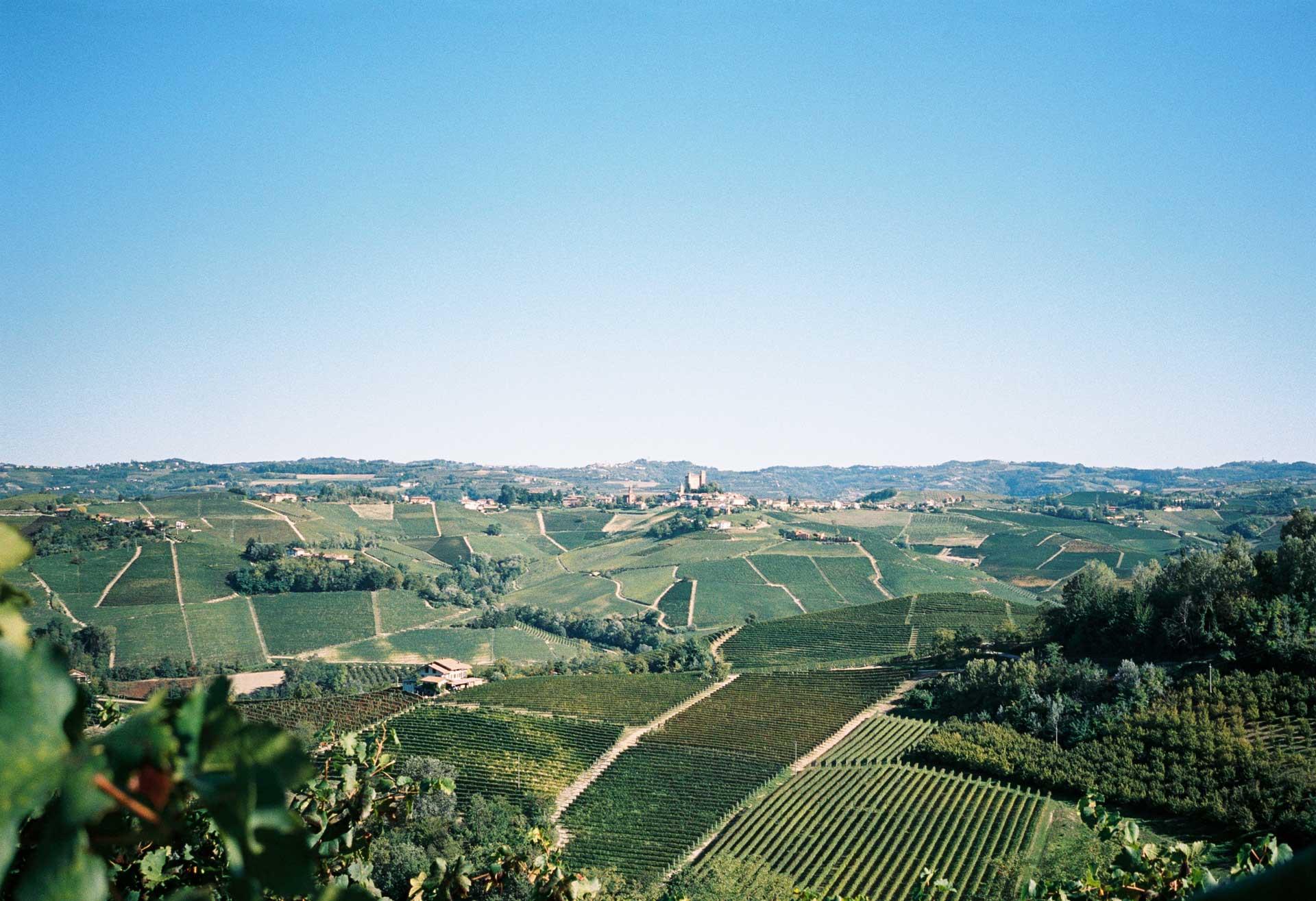 piemonte_wine_mechanics