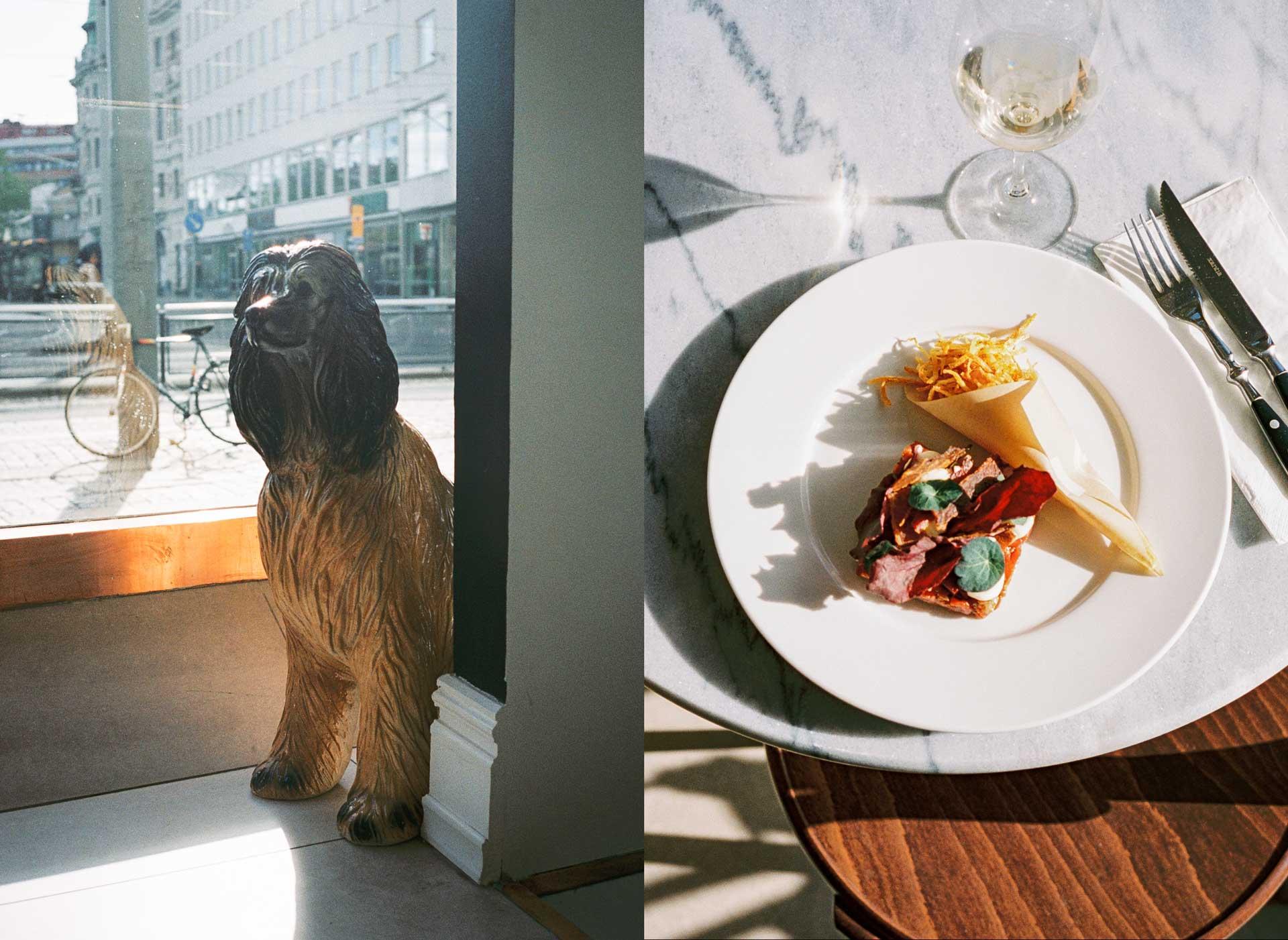 wolfgang_vincafe_dog